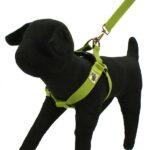 Bamboo Zen dog harness